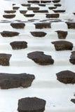 在典型的Canarian样式建立的石步 兰萨罗特岛 加那利群岛tenerife 库存照片