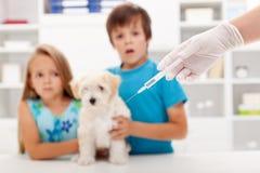 在兽医医生的孩子有他们的宠物的 图库摄影