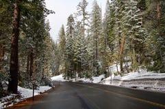 在内华达山山的路与雪和森林 免版税库存图片