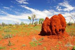 在内地澳大利亚人的巨型的白蚁土墩,西澳州 库存照片