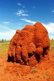 在内地澳大利亚人的巨型的白蚁土墩,西澳州 库存图片