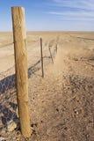 在内地澳大利亚人的Dingoe篱芭 免版税库存图片