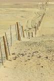 在内地澳大利亚人的Dingoe篱芭 图库摄影