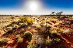 在内地澳大利亚人 免版税库存照片