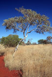 在内地澳大利亚 库存图片