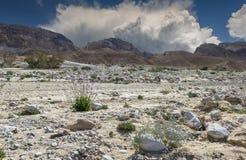 在内盖夫的沙漠,以色列通过Paran 库存图片