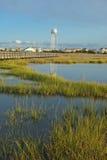 在内陆水路附近的沼泽 库存照片