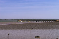 在冈比亚河的跳船 免版税库存照片