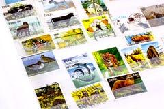 在册页的爱尔兰动物印花税 免版税库存照片