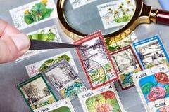 在册页的老邮票 图库摄影