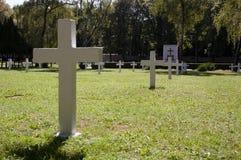 在军事公墓的白色十字架 库存照片