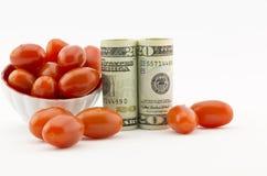 在农业的投资 免版税库存图片