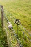 在农业篱芭的双线的张力 图库摄影