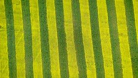 在农业领域天线的黄色和绿色条纹和转动施催眠术 股票录像