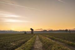 在农业领域的国家日出 库存照片