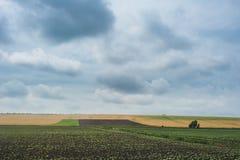 在农业绿色领域的日落 严重的天空 免版税库存图片