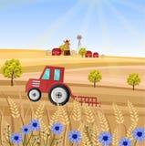 在农厂传染媒介例证的拖拉机 麦田茎 普罗旺斯收获背景 库存例证