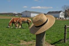 在农厂篱芭岗位的门诺派中的严紧派的帽子 库存图片