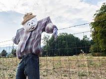 在农厂篱芭的稻草人 库存图片
