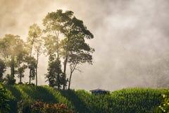 在农场和美好的日出的偏僻的小屋 图库摄影