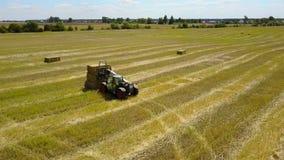 在农场的农业劳动 股票视频