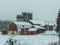 在农场的冬天 库存照片