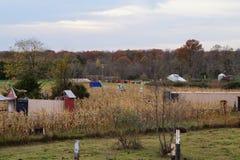 在农场的可爱的秋天天 免版税库存照片