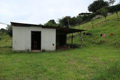 在农场的哥斯达黎加棚子 免版税库存照片