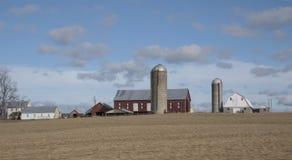 在农场的春天早晨 库存照片