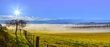 在农场的有薄雾的早晨 免版税库存照片
