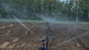 在农场的灌溉农业系统 影视素材
