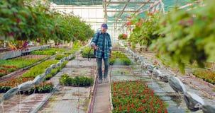 在农场的花匠浇灌的花 股票录像