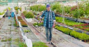 在农场的花匠浇灌的花 股票视频