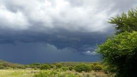 在农场的雨 库存图片