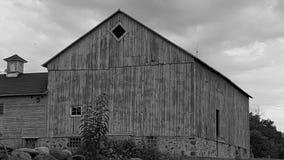 在农场 图库摄影