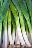在农夫市场上的新鲜的健康生物韭葱 库存图片