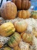 在农夫市场上的许多南瓜 免版税图库摄影