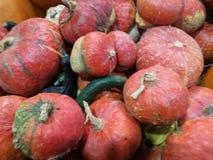 在农夫市场上的许多南瓜 免版税库存照片