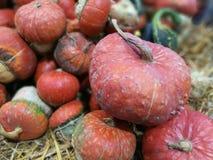 在农夫市场上的许多南瓜 免版税库存图片