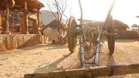在农村家庭的印度的公牛推车 影视素材