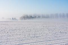 在农村横向的冬天与结构树和雾 库存图片