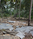 在农村的损坏的柏油路在洪水以后的泰国 洪水的后果 免版税库存图片