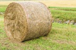 在农村的被按的干草捆详细 库存图片