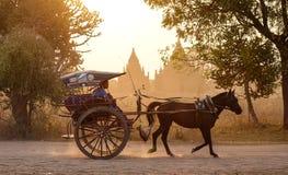 在农村路的一个马推车在Bagan,缅甸 免版税库存图片
