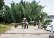 在农村路的一棵妇女运载的草 免版税图库摄影