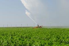 在农田弗莱福兰省的水灌溉 免版税库存照片