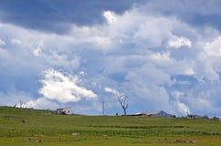 在农田的不祥的剧烈的暴风云 免版税图库摄影