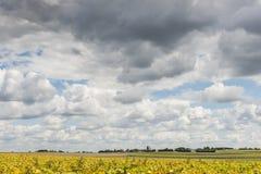 在农田的云彩在鲁瓦扬附近 库存图片