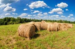 在农田的干草和秸杆大包在蓝天下 免版税库存图片