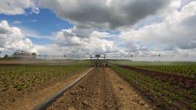 在农田的灌溉系统 库存照片